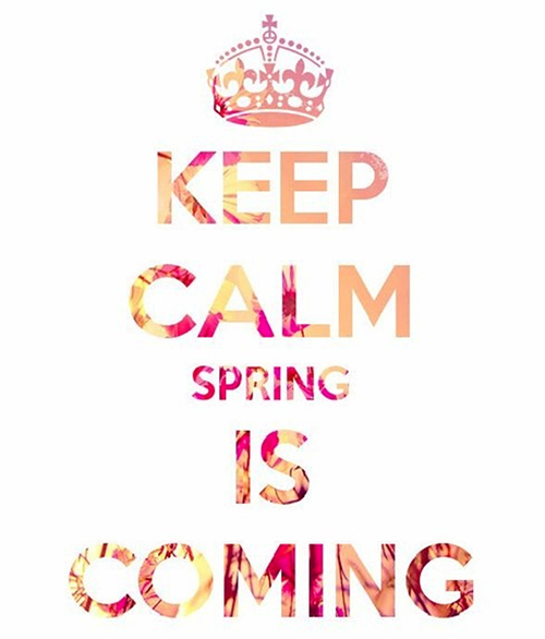 adoptions-first-keep-calm-spring-is-coming